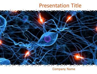 Nervous System PPT Presentation Template
