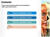 Muscle download powerpoint themes