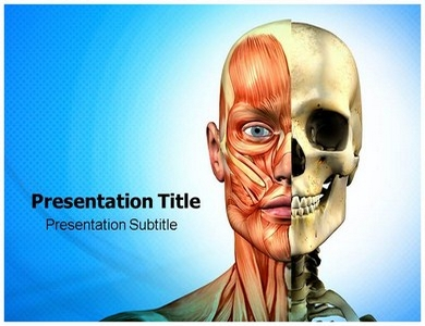 Muscle PPT Presentation Template
