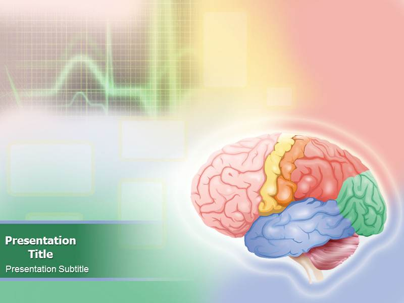 Animated brain anatomy powerpoint templates and backgrounds download toneelgroepblik Choice Image