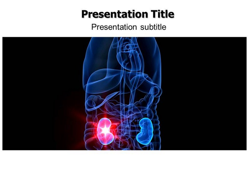 Kidney powerpoint templates and backgrounds download toneelgroepblik Choice Image