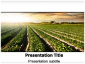 Cultivation powerPoint template