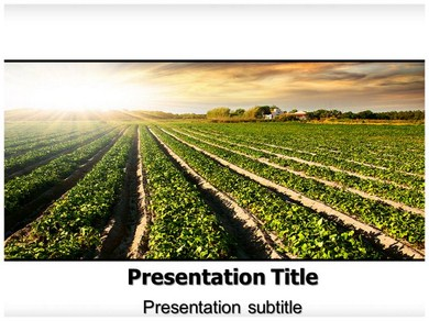 Cultivation PPT Presentation Template