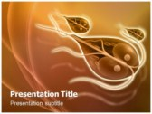 Giardia powerPoint template