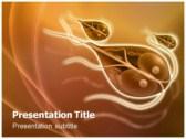 Giardia powerPoint template