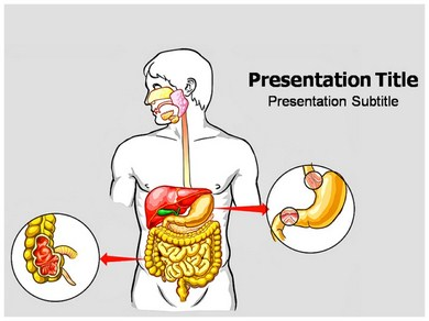 Digestive system template english teaching worksheets digestive digestive system powerpoint templates and backgrounds toneelgroepblik Images