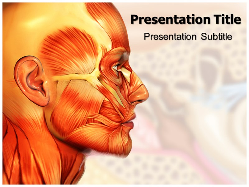 ent anatomy powerpoint templates and backgrounds, Modern powerpoint
