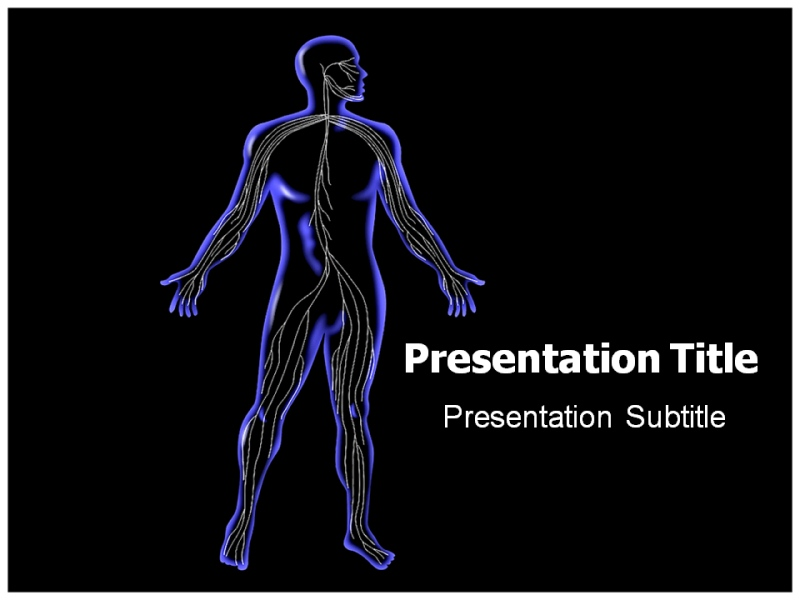 Central nervous system powerpoint templates and backgrounds download toneelgroepblik Image collections