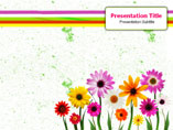 Flowers Delivery Templates For Powerpoint