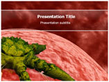 Salmonella Templates For Powerpoint