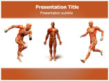 Anatomy Body Templates For Powerpoint