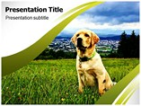 Dog PowerPoint Slides