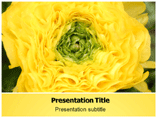 Free Flower Powerpoint Template