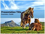Horse Free Powerpoint Template