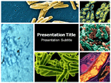 Tuberculosis Symptoms Templates For Powerpoint