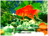 Aquarium Tank Templates For Powerpoint