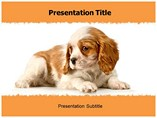 New Puppy Templates For Powerpoint