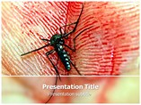 Dengue Templates For Powerpoint