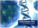 Structure of DNA Templates For Powerpoint