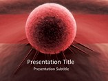 Red Cancer Cell Templates For Powerpoint