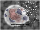 Neno Technology Templates For Powerpoint