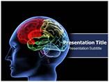 Neurology PowerPoint Slides