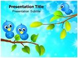 Twitter PowerPoint Designs