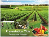 Organic Farming Templates For Powerpoint
