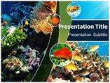 Coral Reefs Templates For Powerpoint