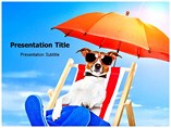 Pet Luxury Templates For Powerpoint