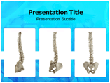 Spinal Templates For Powerpoint