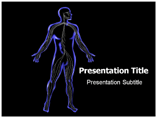 Central Nervous System Templates For Powerpoint