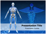 Human Skeleton Templates For Powerpoint