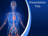 Human Vascular System Templates For Powerpoint