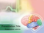 Brain - PPT Template