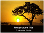 Acacia Templates For Powerpoint