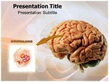 Hypothalamus Templates For Powerpoint
