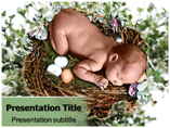 Baby birth Templates For Powerpoint