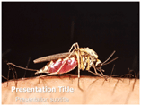 Malaria Templates For Powerpoint