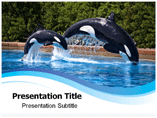 Breaching Templates For Powerpoint