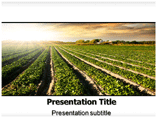 Cultivation Templates For Powerpoint