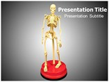 Human Skeletons Templates For Powerpoint