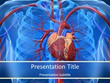 Cardiovascular System Templates For Powerpoint