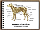 Dog anatomy Templates For Powerpoint