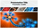 Neuron Models Templates For Powerpoint