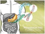Diabetes mellitus Templates For Powerpoint