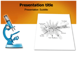 Amobea Templates For Powerpoint