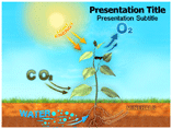 photosynthesis Templates For Powerpoint