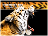 Tigers Templates For Powerpoint