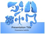 Renal Physiology Templates For Powerpoint
